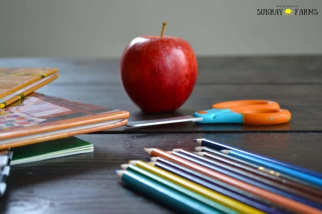 5 Reasons This Former Teacher Homeschools